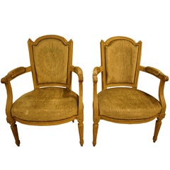 19th Century Shabby Chic French Salon Chairs