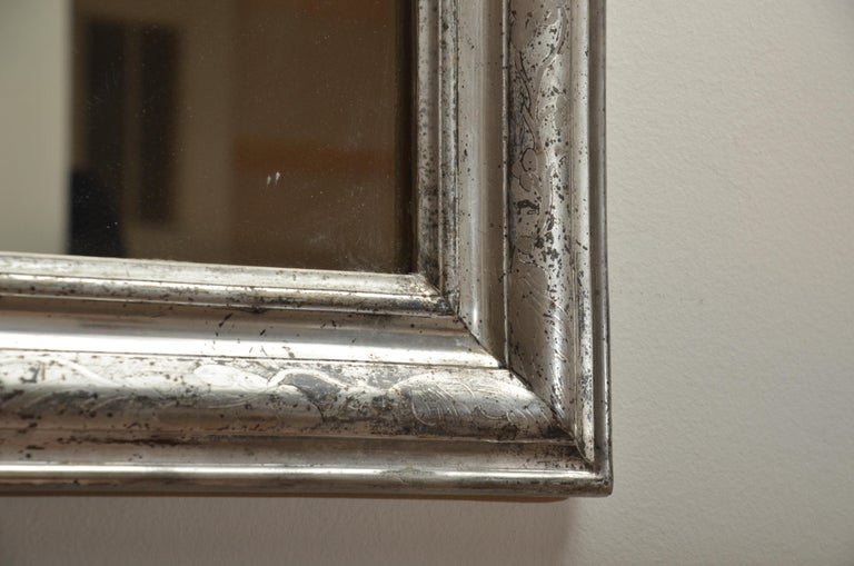 Silver giltwood mirror with arched tops and etched molding.