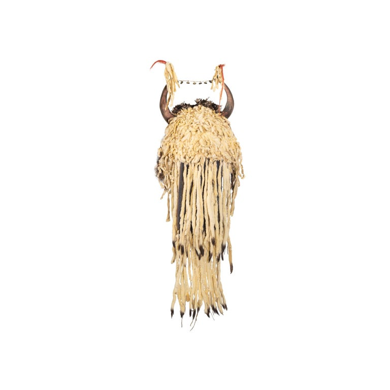 American 19th Century Sioux Split Horn Headdress For Sale