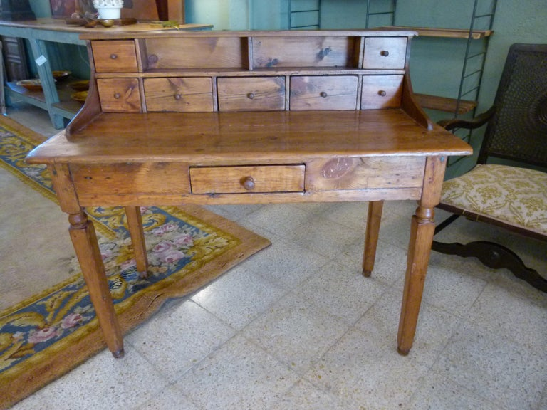 19th Century Spanish Rustic Secretarial Cabinet In Good Condition For Sale In Vulpellac, Girona