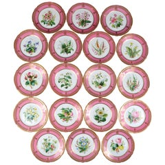 19th Century Staffordshire Rose Pompadour Botanical Dessert Service