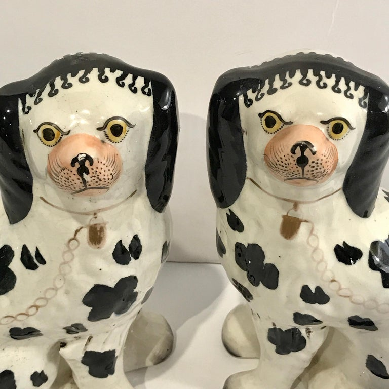 19th Century Staffordshire Seated Disraeli Black and White Spaniel Dogs For Sale 3