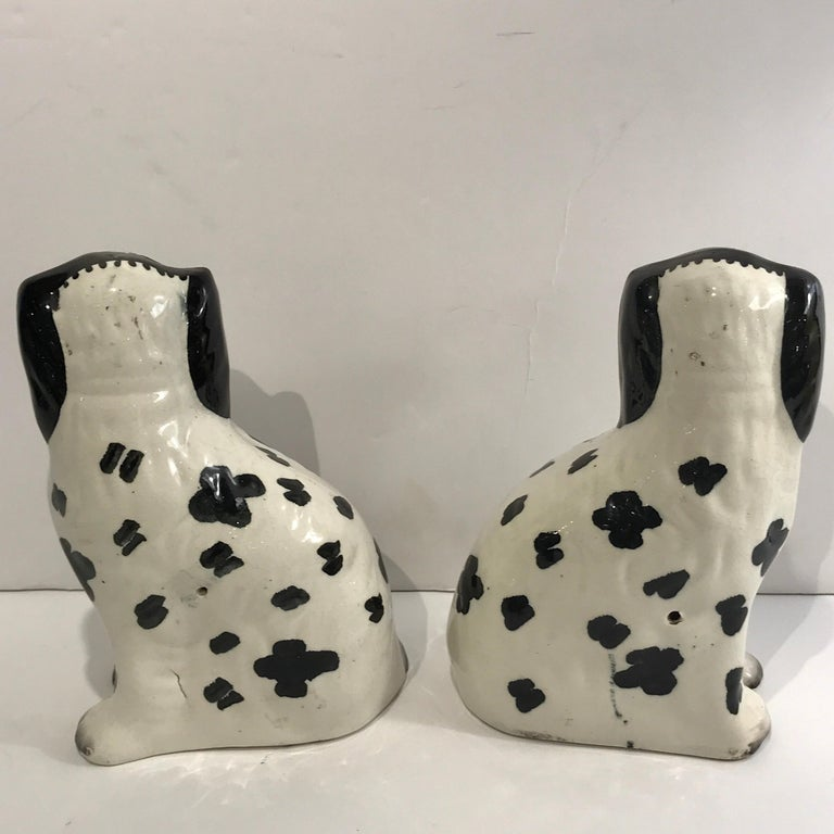 19th Century Staffordshire Seated Disraeli Black and White Spaniel Dogs For Sale 5