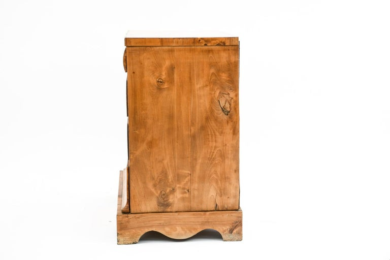 19th Century Swedish Birch Chest of Drawers For Sale 4