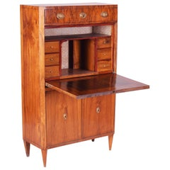 19th Century Unique Czech Walnut Biedermeier Secretary/Writing Desk, 1830s