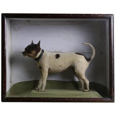 "19th Century Victorian Cased ""The Rat Catcher"" Taxidermy Rat Terrier Dog"