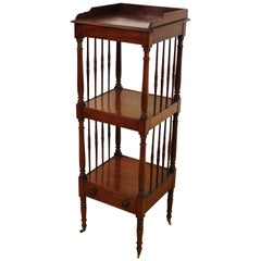 19th Century Victorian Mahogany Wot Not