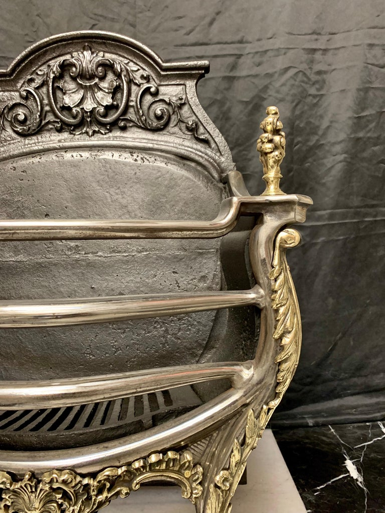 English 19th Century Victorian Rococo Style Cast Iron and Brass Fire Grate For Sale