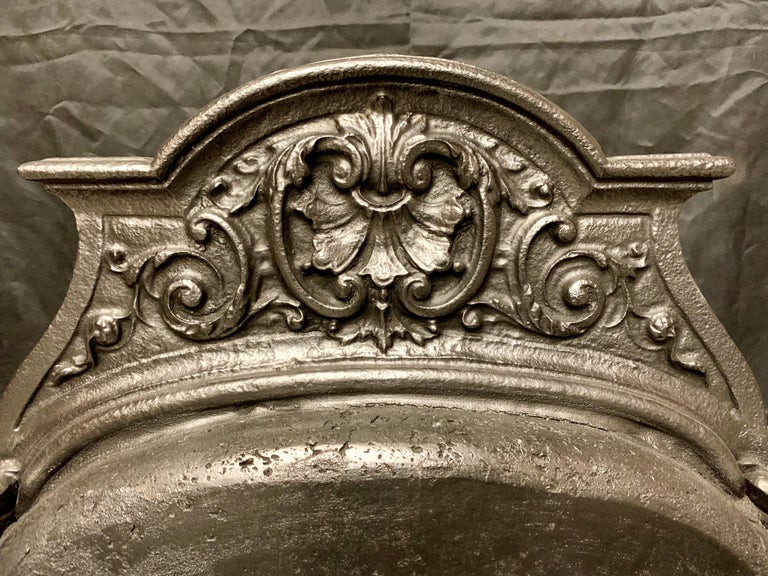 19th Century Victorian Rococo Style Cast Iron and Brass Fire Grate For Sale 1