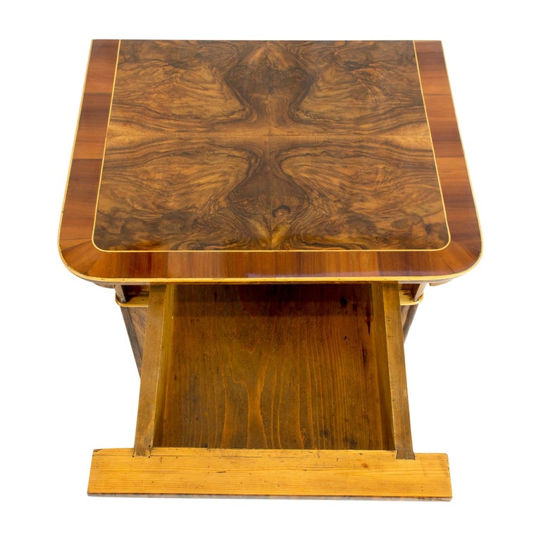 19th Century Walnut Nightstand or Side Cabinet In Good Condition For Sale In Darmstadt, DE