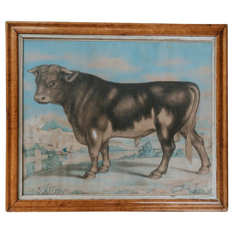 19th Century Watercolor of a Bull For Sale