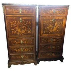 19th Century Wood Louis XVI Revival Rosewood Pair of France Secretaire, 1880s