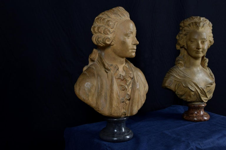 19th Century, Pair of Terracotta French Busts For Sale 9