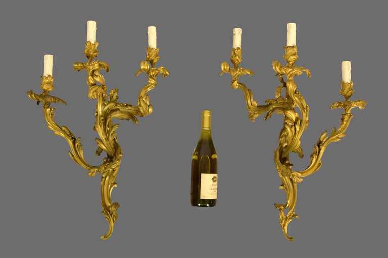 19th Century Pair of Three-Light Gilt Bronze French Louis XV Style Appliques For Sale 1