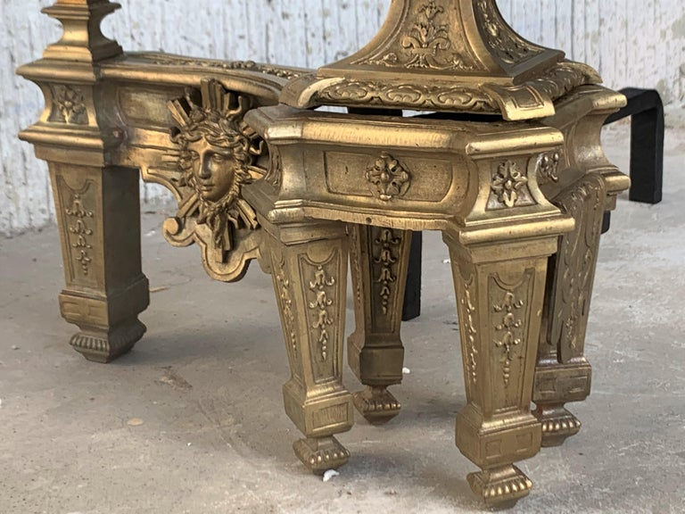 19th Century Set of Antique Andirons or Firedogs in Bronze and Iron For Sale 6