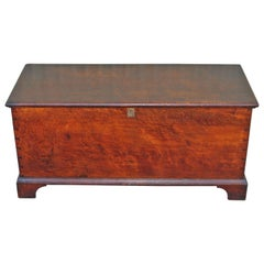 19th Century Blanket Chest in Walnut from Pennsylvania