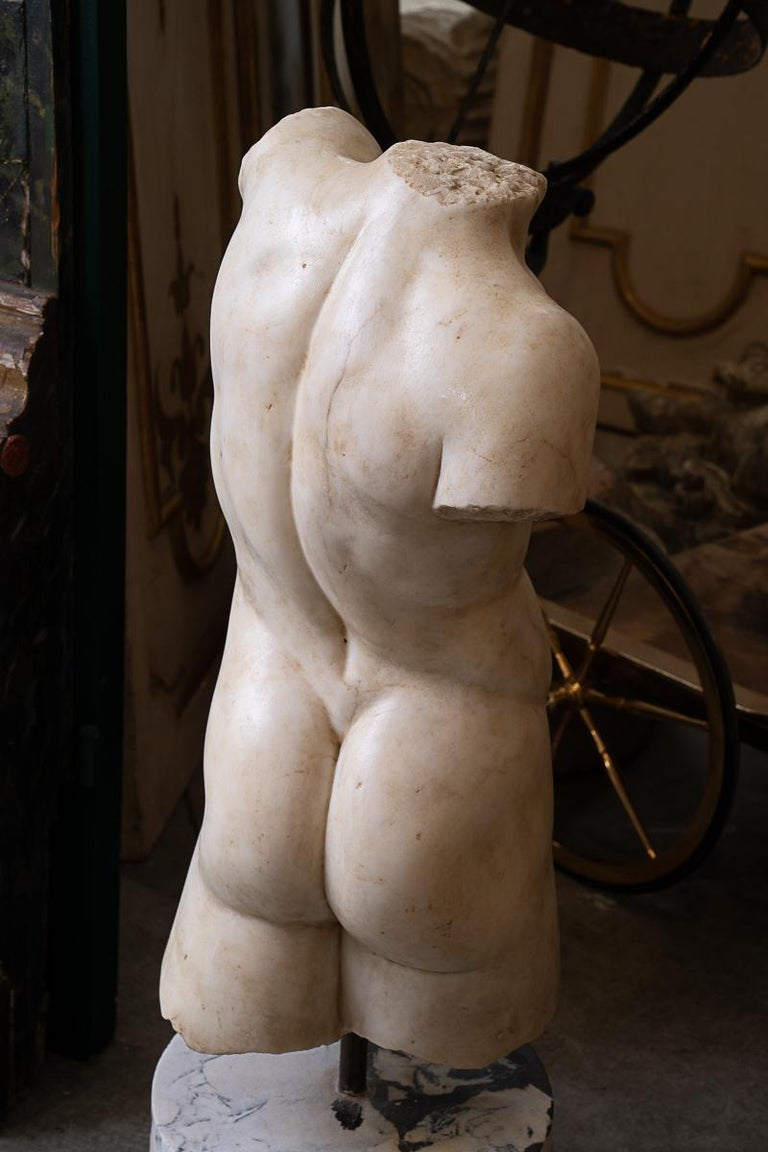 Beautifully carved Italian 19thc marble torso on marble base.