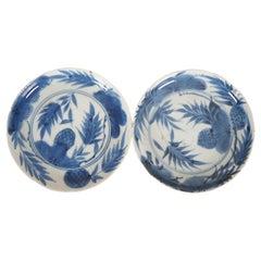 2 18th Century Antique Kangxi Blue & White Chinese Porcelain Plates Dish