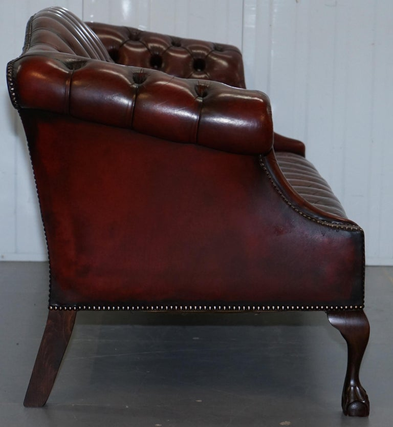 2 and 3 Seat Pair of Claw & Ball Feet Restored Brown Leather Chesterfield Sofas For Sale 4