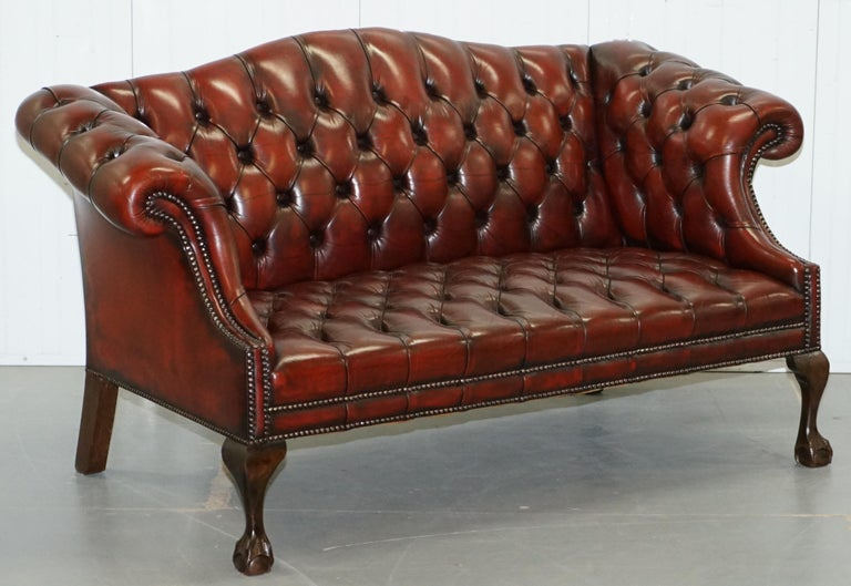 2 and 3 Seat Pair of Claw & Ball Feet Restored Brown Leather Chesterfield Sofas For Sale 7