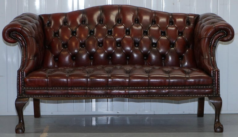 2 and 3 Seat Pair of Claw & Ball Feet Restored Brown Leather Chesterfield Sofas For Sale 8
