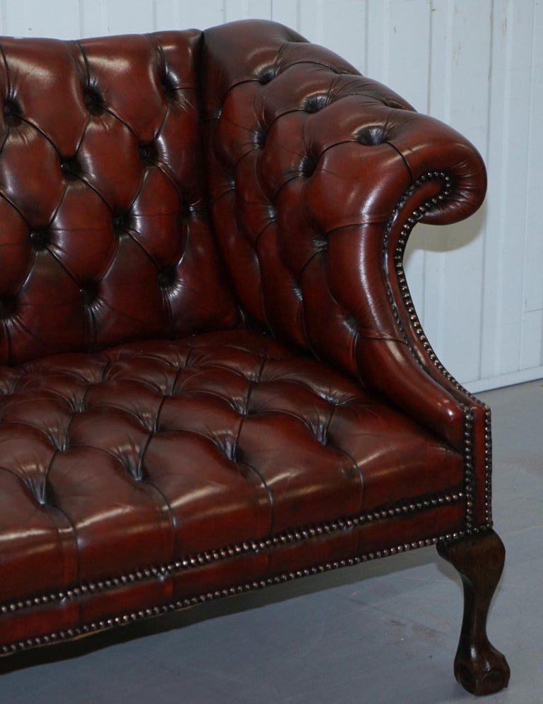 2 and 3 Seat Pair of Claw & Ball Feet Restored Brown Leather Chesterfield Sofas For Sale 10