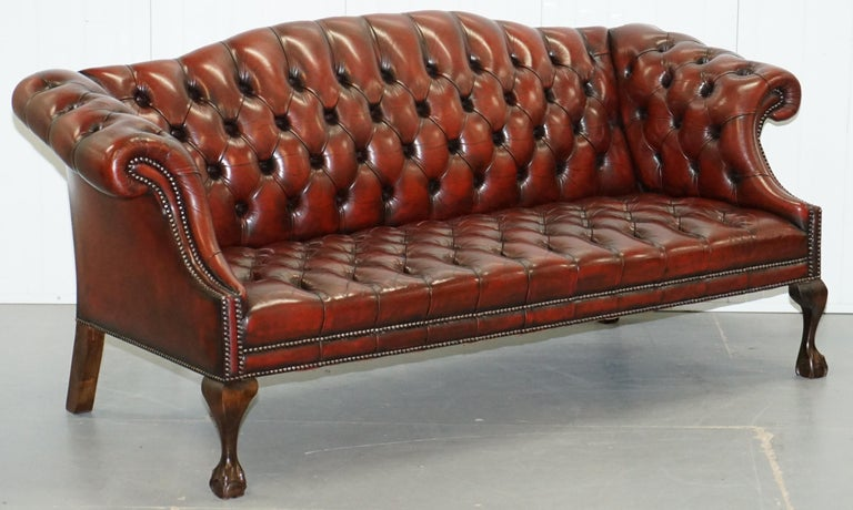 We are delighted to offer for sale this stunning pair of fully restored hump / camel back regency style Chesterfield buttoned sofas with hand carved claw and ball feet.  A very attractive and well made pair, the design originally dates back to the