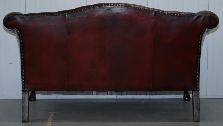 2 and 3 Seat Pair of Claw & Ball Feet Restored Brown Leather Chesterfield Sofas For Sale 13
