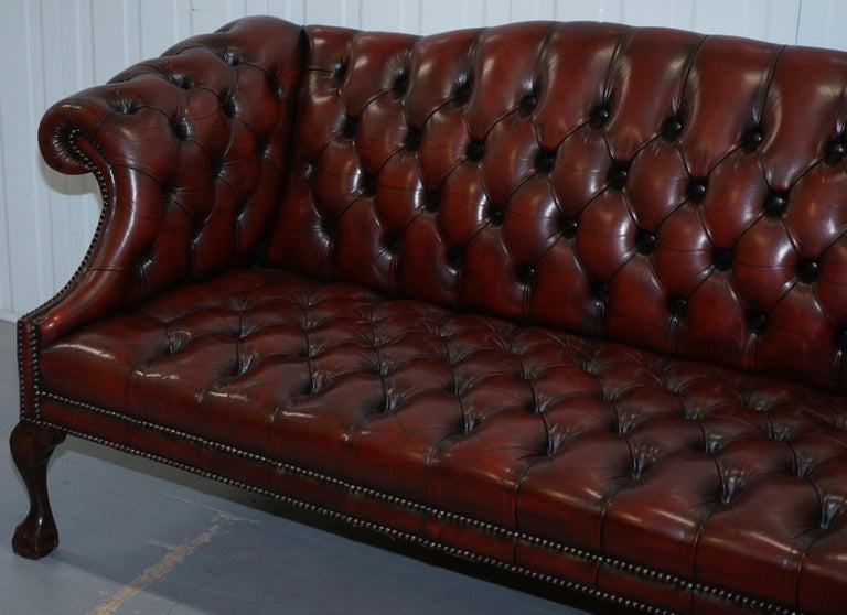 English 2 and 3 Seat Pair of Claw & Ball Feet Restored Brown Leather Chesterfield Sofas For Sale