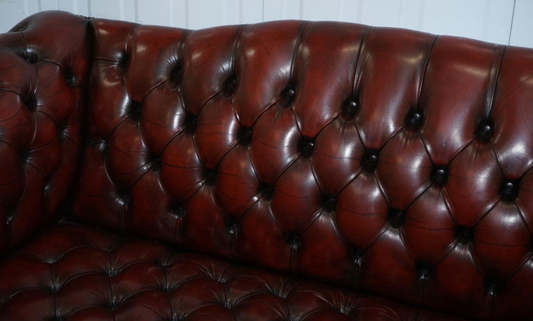 2 and 3 Seat Pair of Claw & Ball Feet Restored Brown Leather Chesterfield Sofas For Sale 1
