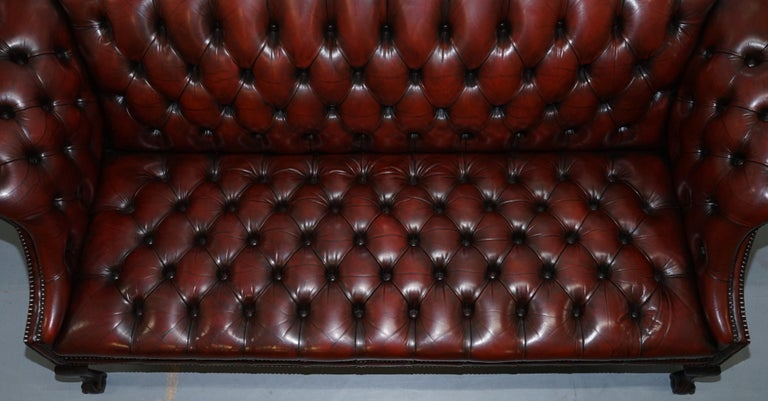 2 and 3 Seat Pair of Claw & Ball Feet Restored Brown Leather Chesterfield Sofas For Sale 2