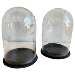2 Large Glass Domes