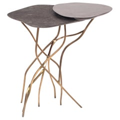 2-Top Acacia Side Table in Shagreen, Shell & Bronze-Patina Brass by R&Y Augousti