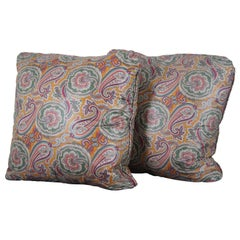 2 Vintage Square Paisley Floral Down Filled Designer Throw Pillows Cushions