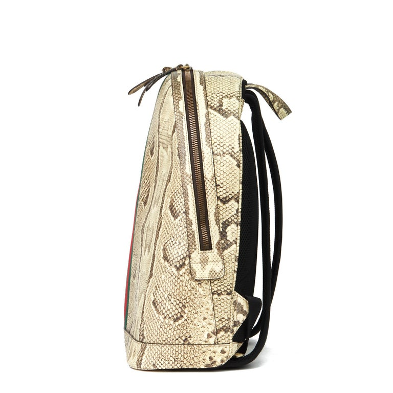 Beige 2019 Gucci Natural Animalier Python Leather & Web Backpack For Sale