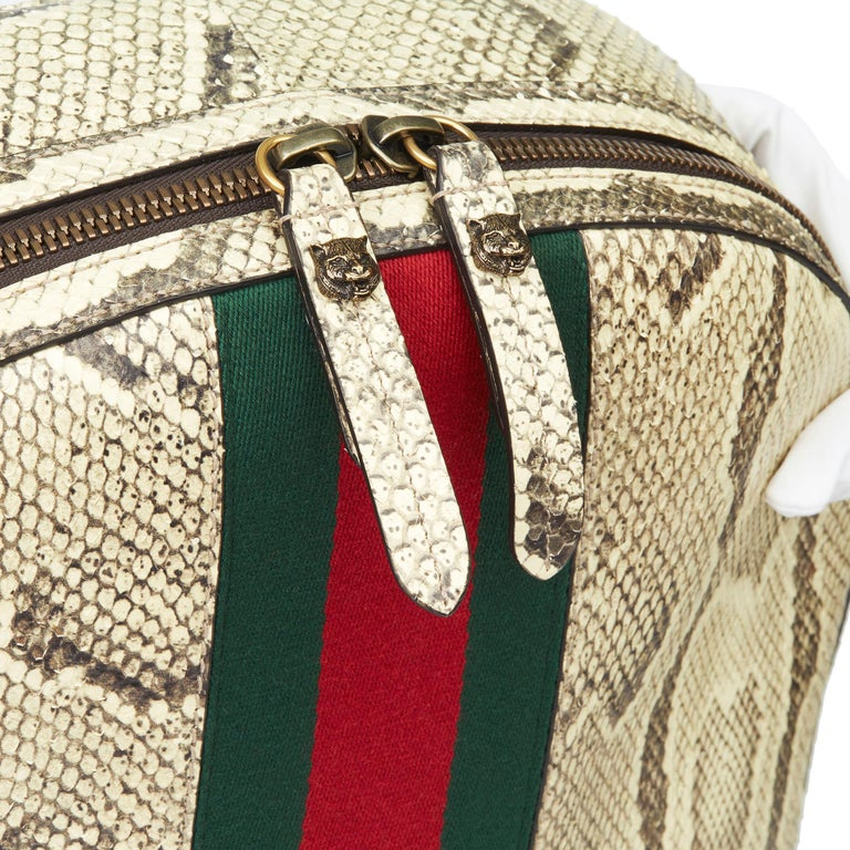 2019 Gucci Natural Animalier Python Leather & Web Backpack For Sale 1