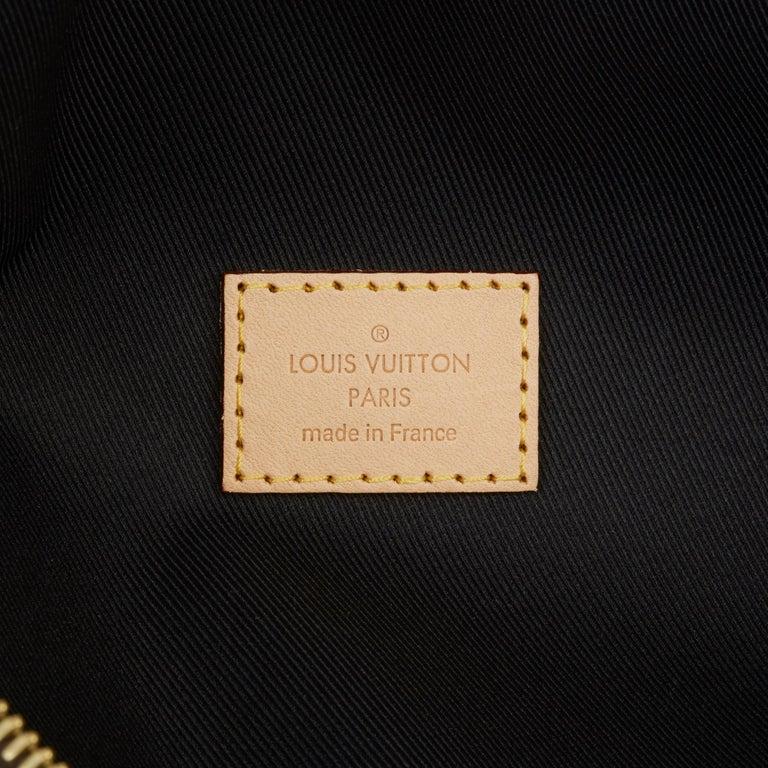 2019 Louis Vuitton Brown Monogram Coated Canvas Bum Bag For Sale 5