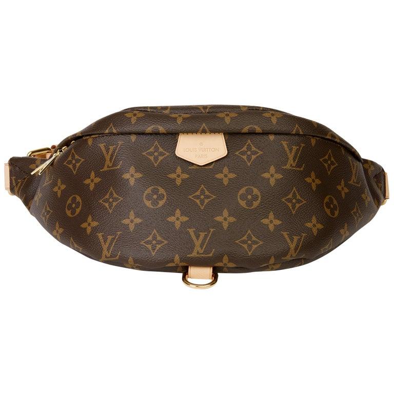 2019 Louis Vuitton Brown Monogram Coated Canvas Bum Bag For Sale
