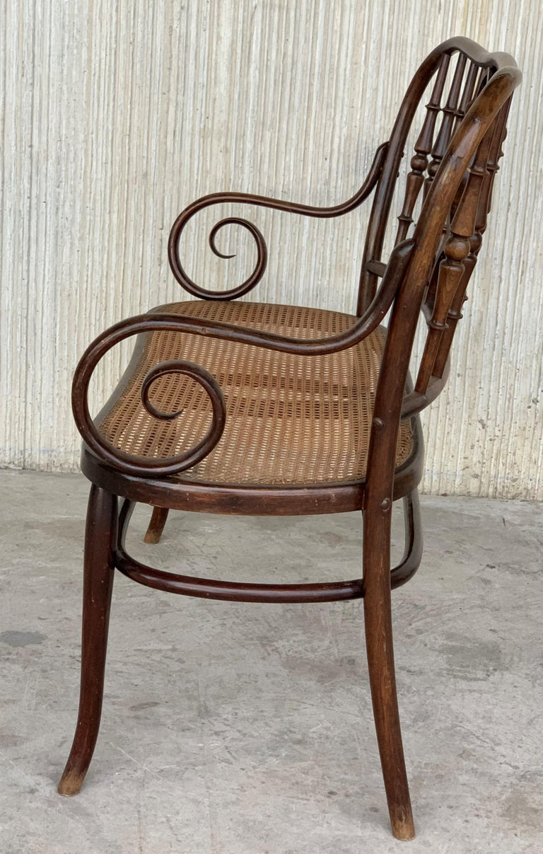 20th Century Bentwood Sofa in the Thonet Style, circa 1925, Caned Seat For Sale 3