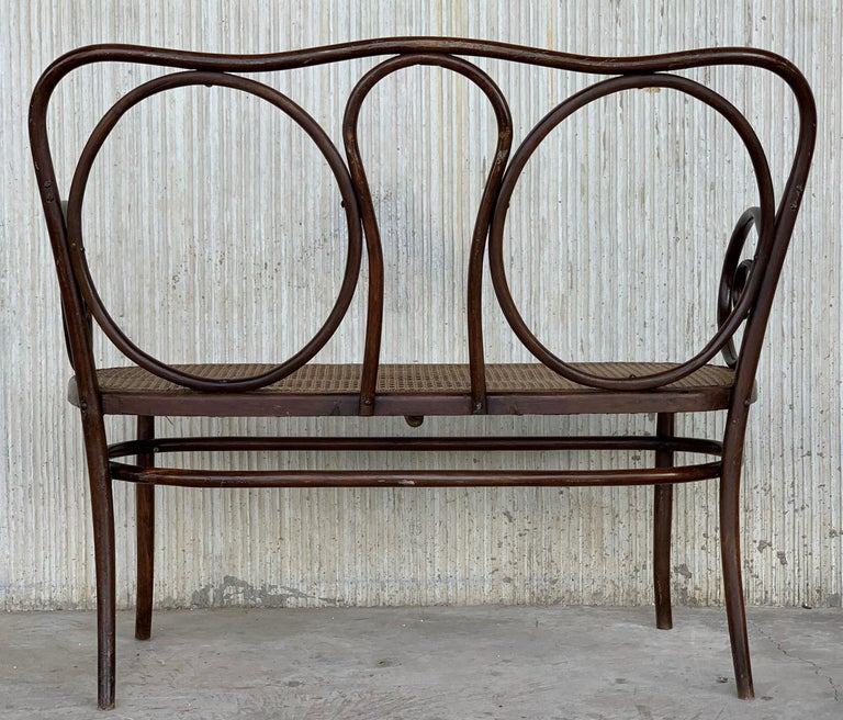 20th Century Bentwood Sofa in the Thonet Style, circa 1925, Caned Seat For Sale 5