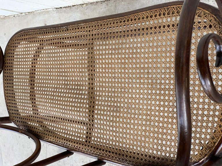 20th Century Bentwood Sofa in the Thonet Style, circa 1925, Caned Seat For Sale 6