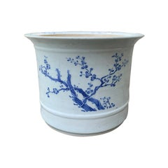 20th Century Blue and White Cherry Blossom Porcelain Cachepot