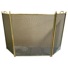20th Century Bronze Fire Screen from France