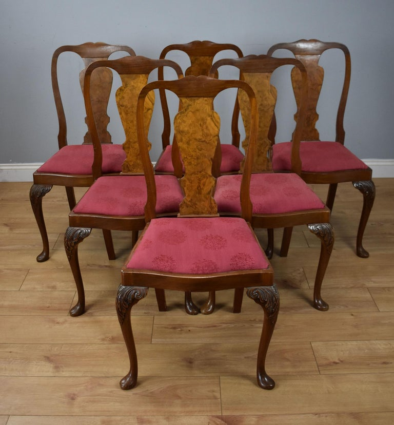 20th Century English Queen Anne Style Burr Walnut Dining Suite For Sale 10