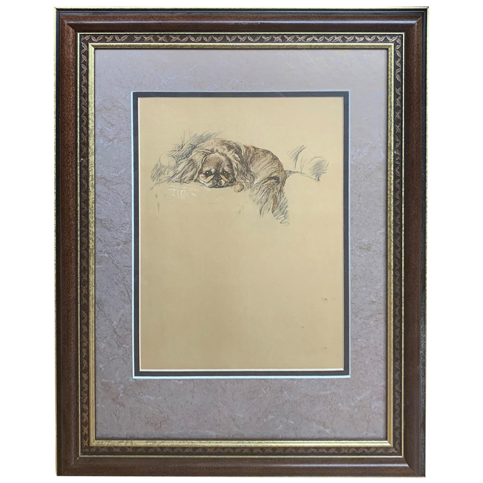 20th Century Engraving of Pekingese in Giltwood Frame, Unsigned