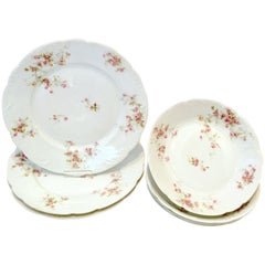 20th Century French Limoges Dinnerware by Theodore Haviland, Set/7