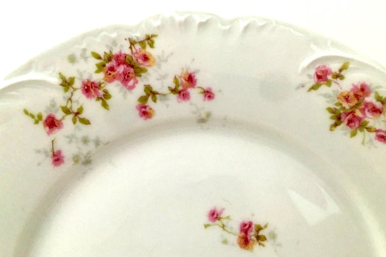 20th Century French Limoges Dinnerware by Theodore Haviland Set of Nine Pieces For Sale 1