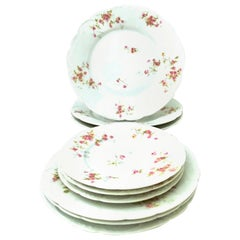 20th Century French Limoges Dinnerware by Theodore Haviland Set of Nine Pieces