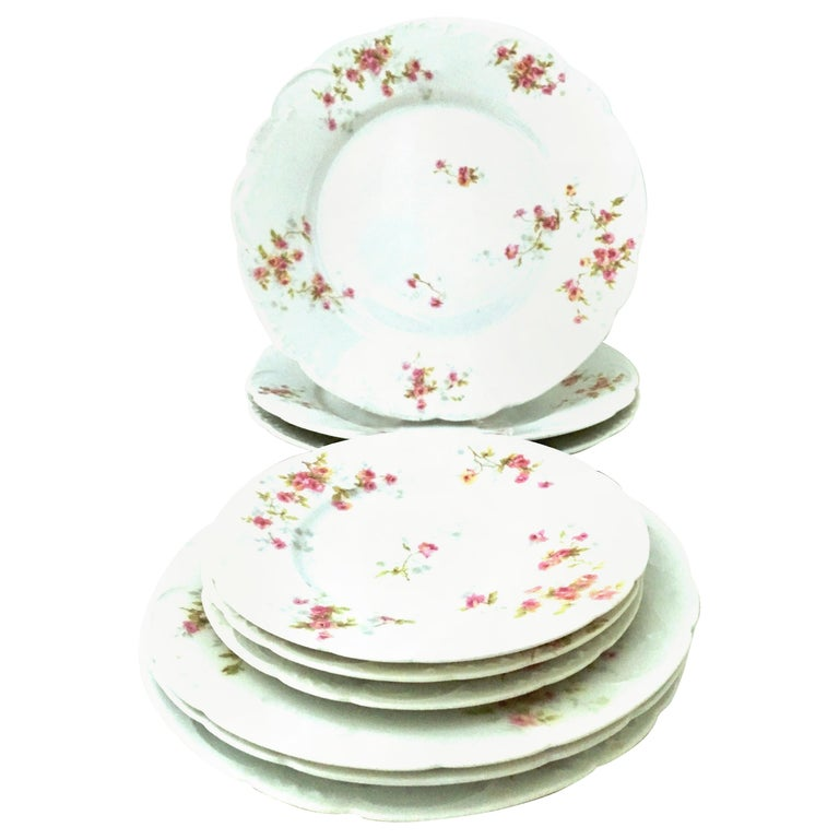 20th Century French Limoges Dinnerware by Theodore Haviland Set of Nine Pieces For Sale