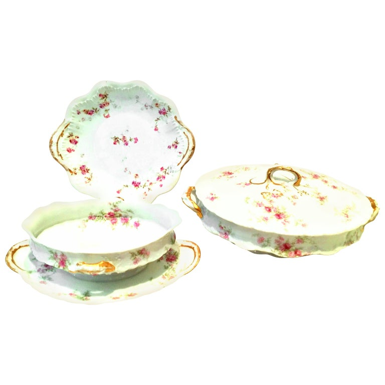 20th Century French Limoges Set of Three Serving Pieces by, Theodore Haviland For Sale
